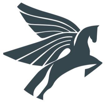 Pegasus Consult